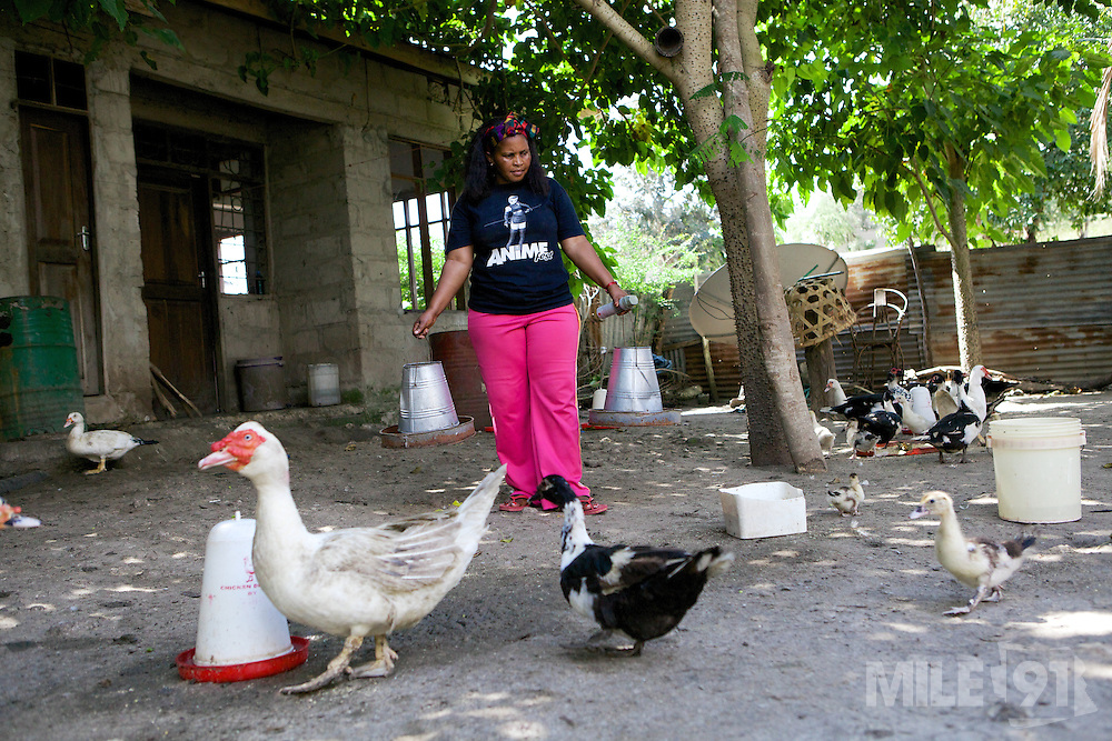 Haika Mshomi feeding her ducks on her compound.<br /> <br /> Haika set up and now runs a poultry business selling chickens, their eggs and also ducks, Mail Mojo Soweto, Tanzania.<br /> <br /> She attended MKUBWA enterprise training run by the Tanzania Gatsby Trust in partnership with The Cherie Blair Foundation for Women.