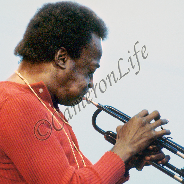 """Miles Davis - blow.- This image of Miles perfectly compliments Guy Portelli's piece """"Blow"""" - from this photograph you can see how well Guy has captured Miles' playing profile."""