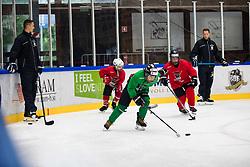 Ziga Pavlin and Robert Sabolic during Anze Kopitar's ice hockey academy in Sport hall Bled, 2nd July, 2020, Bled, Slovenia. Photo by Grega Valancic / Sportida