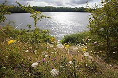 2020-07-27 HS2: Calvert Jubilee Nature Reserve