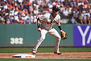 San Francisco Giants third baseman Gordon Beckham (17) reacts to a play against the Los Angeles Dodgers at AT&T Park in San Francisco, Calif., on October 1, 2016. (Stan Olszewski/Special to S.F. Examiner)