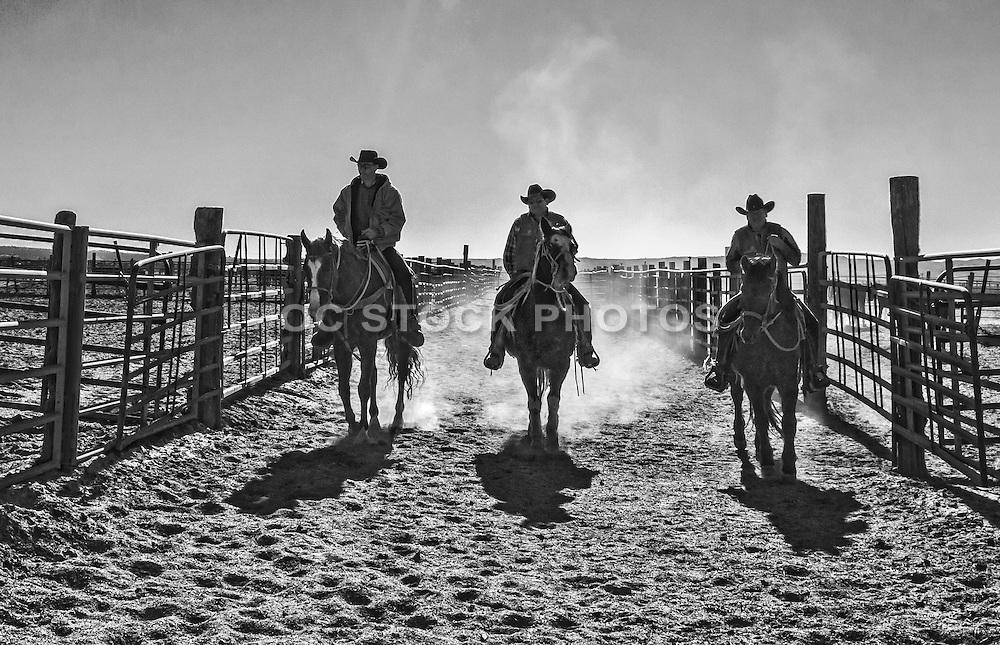 Cowboys Riding Through a Cattle Ranch in Ridgecrest California
