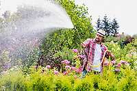 Portrait of mature gardener watering plants using hose in shop