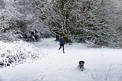 A runner and his spaniel make their way through the wintry woods as people and their pets enjoy the three inches of snow on Hampstead Heath in North London. Hampstead, London, February 01 2019.