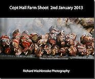 Copt Hall Farm Shoot  2nd January 2013