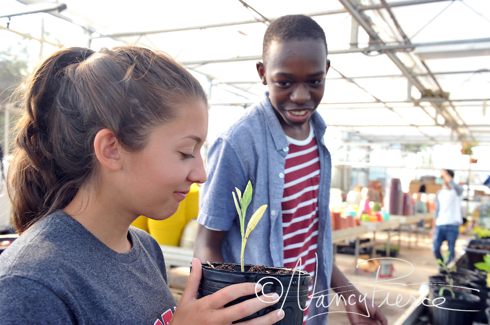 CTE - Plant Science (Horticulture)   NMHS