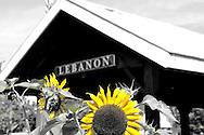 Lebanon Ohio