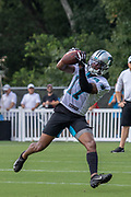Carolina Panthers wide receiver Terry Godwin (17) catches a pass during training camp at Wofford College, Sunday, August 11, 2019, in Spartanburg, S.C. (Brian Villanueva/Image of Sport)