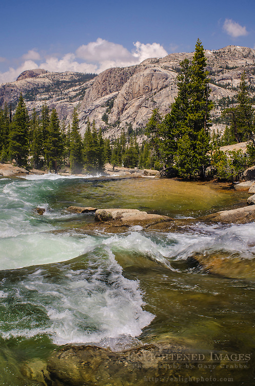 Tuolumne River, Yosemite National Park, California