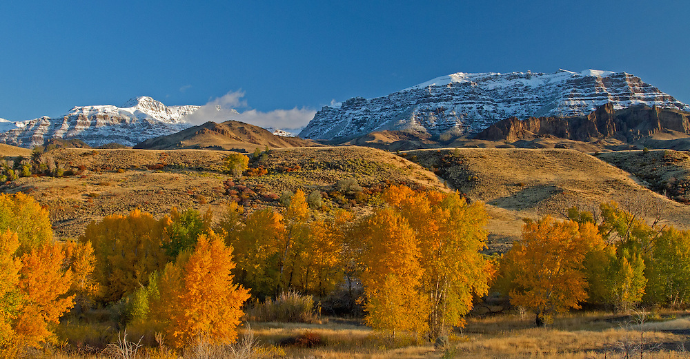 The autumn sun lights up Grizzly Peak and Jim Mountain on an October morning in Wapiti, Wyoming.