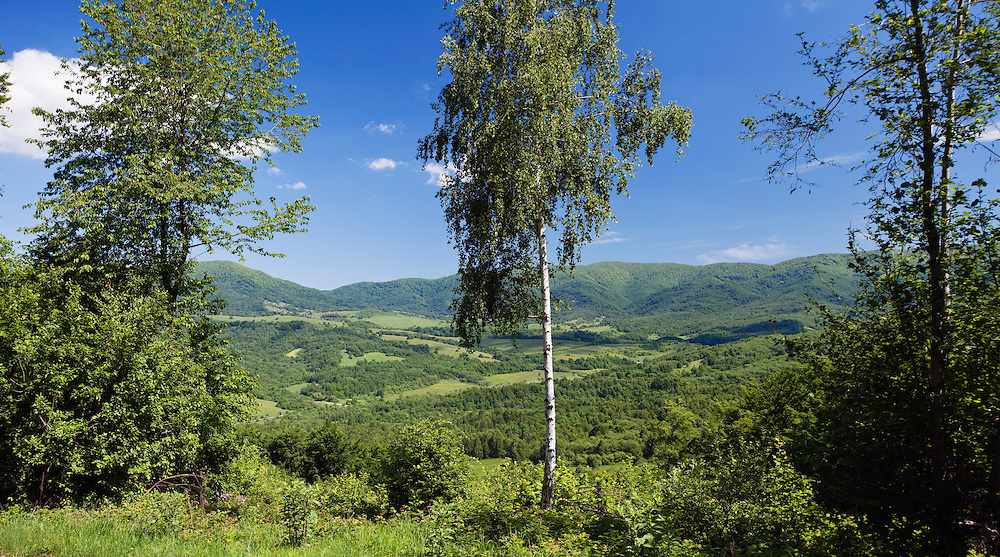 Poloniny National park, Western Carpathians, Eastern Slovakia, Europe