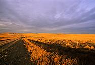 Plains north of the Missouri River at sunset. Near Malta, Montana