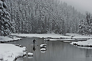 """Winter SUP on the Truckee River 5"" - Peter Spain Stand Up Paddleboarding on the Truckee River"