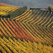 Paesaggi di Langhe-Roero e Monferrato patrimonio dell'Unesco