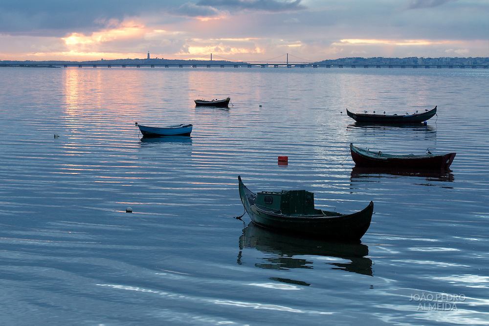 Fishing boats anchored at Tagus River