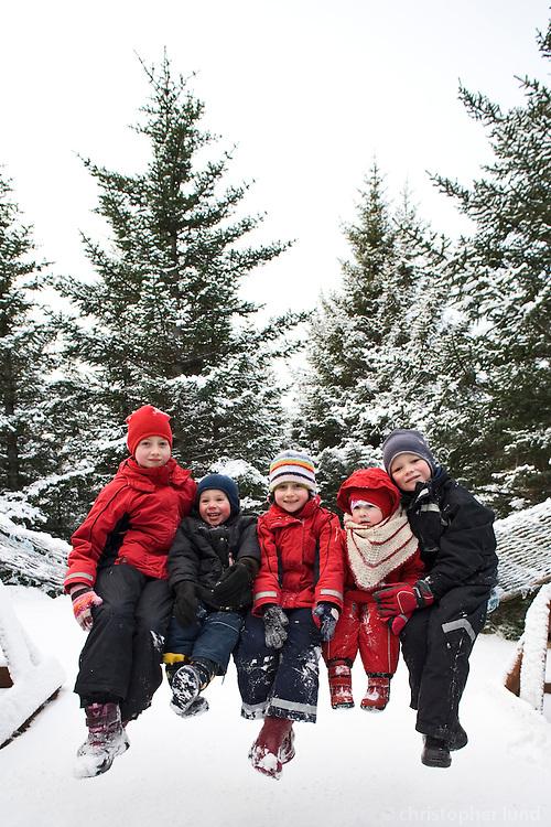 A group of children dressed in winter clothes sitting together outside. Trees and snow in background. Frá gönguferð um Heiðmörk í fallegri vetrarstemningu.