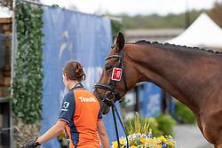Dorien Van der Lee, running with horse of, Den Dulk Nicole, NED, Wallace NOP<br /> World Equestrian Games - Tryon 2018<br /> © Hippo Foto - Dirk Caremans<br /> 17/09/2018