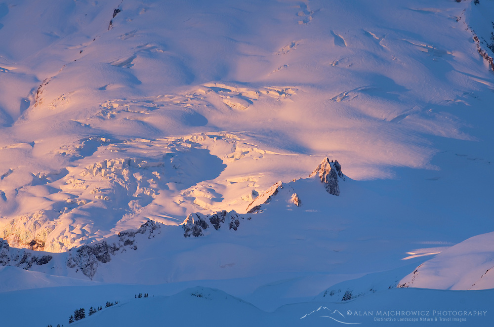 Glaciers on the flanks of Mount Baker glowing in the winter dawn.