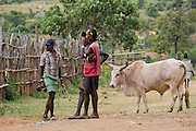 Africa, Ethiopia, Omo region, Ari Tribe men at the cattle market