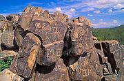 Hohokam Indian petroglyphs on Signal Hill, Tucson Mountain District, Saguaro National Park, Arizona