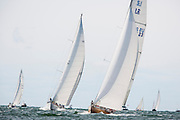12 Meter Class Heritage racing at the Opera House Cup