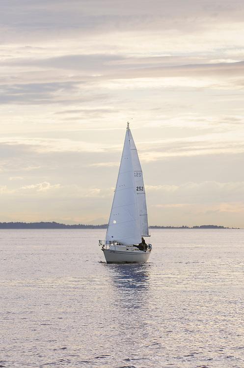 Sailboat in Semiahmoo Bay, Washington.