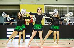 Cheerleaders perform during basketball match between KK Krka and KK Zadar in Round #2 of ABA League 2015/16, on October 3, 2015 in Dvorana Leona Stuklja, Novo mesto, Slovenia. Photo by Vid Ponikvar / Sportida