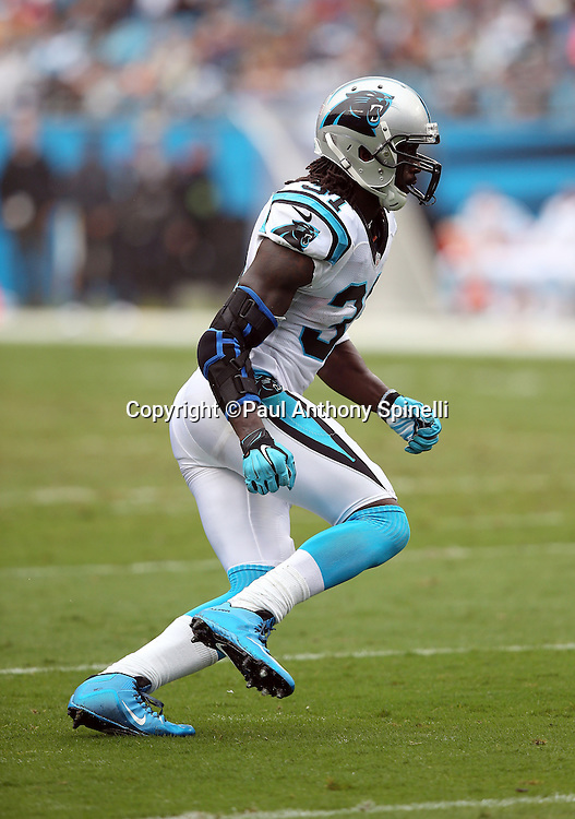 Carolina Panthers cornerback Charles Tillman (31) chases the action during the 2015 NFL week 3 regular season football game against the New Orleans Saints on Sunday, Sept. 27, 2015 in Charlotte, N.C. The Panthers won the game 27-22. (©Paul Anthony Spinelli)