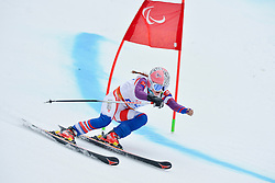 Petra Smarzova, Women's Giant Slalom at the 2014 Sochi Winter Paralympic Games, Russia