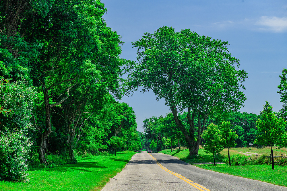 Country Road, Manhanset Rd, Shelter Island, NY