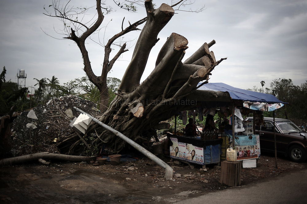 A tree uprooted by cyclone Nargis is seen in Yangon on May 21, 2008. UN Secretary General Ban Ki-moon said on May 21, 2008 he would meet Myanmar's reclusive junta leader during a high-profile trip to convince the country to accept a full-scale cyclone relief operation.