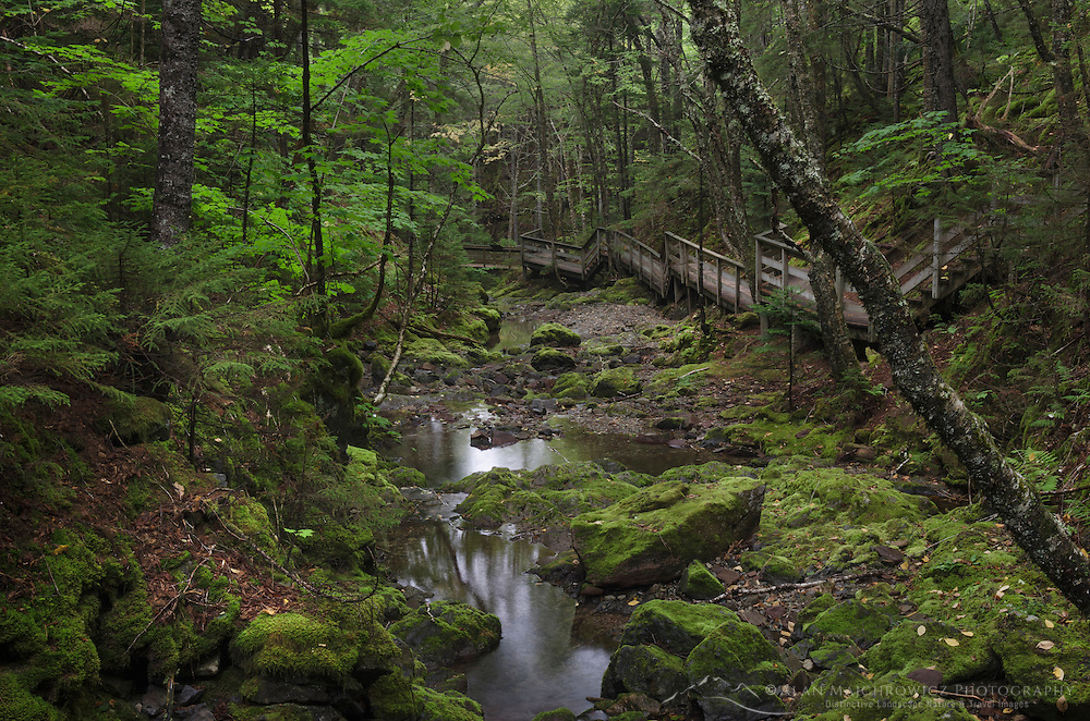Dickson Falls Trail, Fundy National Park New Brunswick Canada