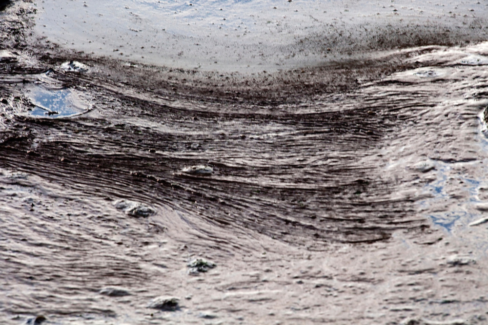 OIly water is seen on June 23, 2010 where workers have to clean up the oil spill in the gulf in Grand Isle, LA where oil has reached the shore. The Deepwater Horizon and the British Petroleum oil spill has been claimed as the most damaging environmental disaster in history.