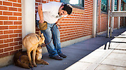 Here is another shot of the double decker dogs. Jose is working to gradually build enough trust with them to get them separated even for a few moments during this session.  <br />
