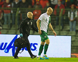 BRUSSELS, BELGIUM - Tuesday, October 15, 2013: Wales' James Collins is treated for an injury by physiotherapist Sean Connelly against Belgium during the 2014 FIFA World Cup Brazil Qualifying Group A match at the Koning Boudewijnstadion. (Pic by David Rawcliffe/Propaganda)