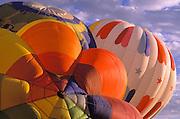 Hot air balloons rising in dawn light at the International Balloon Fiesta, Albuquerque, New Mexico