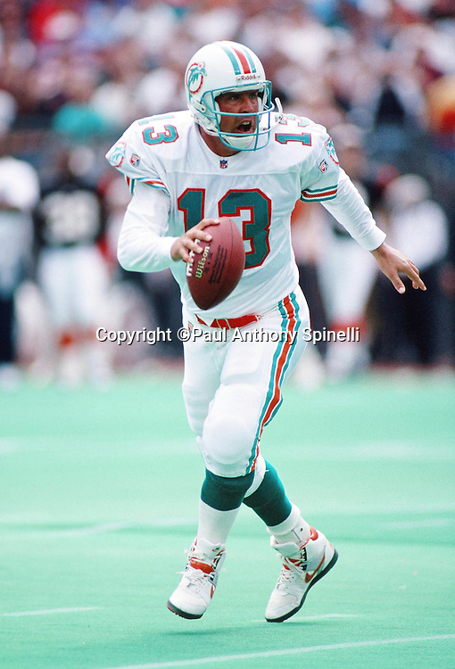 Miami Dolphins quarterback Dan Marino (13) scrambles while looking to throw a pass during the NFL football game against the Cincinnati Bengals on Oct. 1, 1995 in Cincinnati. The Dolphins won the game 26-23. (©Paul Anthony Spinelli)