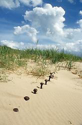 Sand dunes on Spurn Point; Yorkshire,