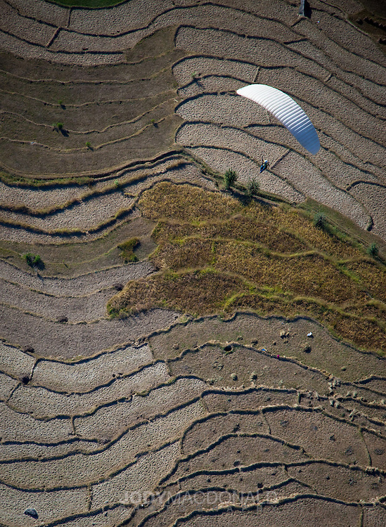 Paraglider soars over terraced fields in the mountains above the town of Bir, India in Himachal Pradesh