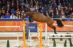 021 - Gehazia VDL<br /> KWPN Stallion Selection - 's Hertogenbosch 2014<br /> © Dirk Caremans