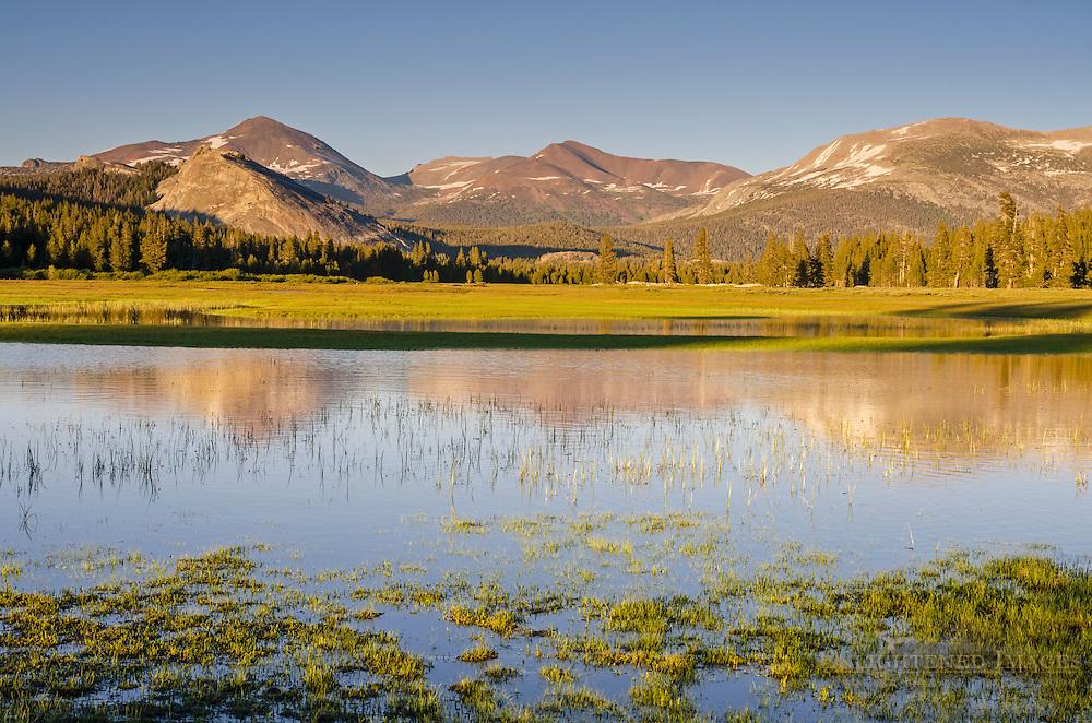 Mountains above the flooded Tuolumne Meadows, Yosemite National Park, California