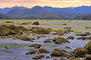 Pacific Ocean at low tide <br /> Meare's Island<br /> British Columbia<br /> Canada