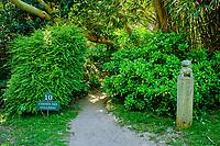 France, Manche (50), Cotentin, Cap de la Hague, Vauville, jardin botanique de Vauville classé Jardin Remarquable // France, Normandy, Manche department, Cotentin, Cap de la Hague, Vauville, botanical garden of Vauville classified as a Remarkable Garden