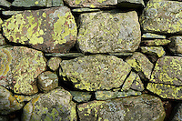 Drystone wall with green lichen