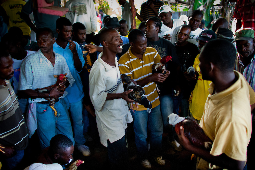 Participants bring their roosters in the middle of the pit to match them with a proper opponent. <br /> <br /> Cockfighting or &quot;Cok Kages&quot; is Haiti's national passion.  Many argue that this sport serves as a form of entertainment and distraction where many could release their frustration and aggression in a safe arena.  The sport is legal in Haiti and less vicious since they don't attach blades to their feet. This event usually takes place on Sundays throughout Haiti.
