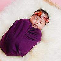 Baby Gee Newborn Favourite
