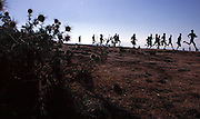 Distance runners train in the hills above Addis Abeba.