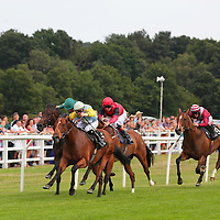 Lingfield 10th August 2013