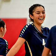 YWLA Volleyball
