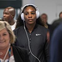 Serena Williams of the United States on day ten of the 2017 Australian Open at Melbourne Park on January 25, 2017 in Melbourne, Australia.<br /> (Ben Solomon/Tennis Australia)
